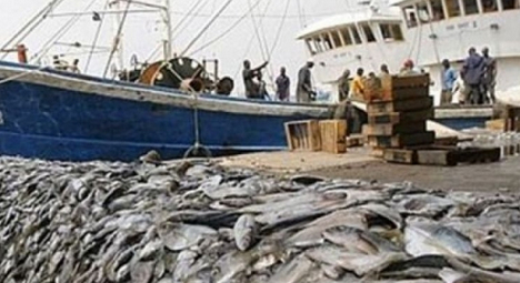 News) AFRICA- Fisheries resources: Why fish are missing in
